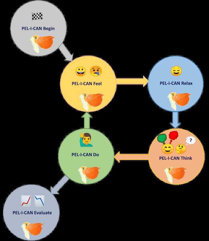 The PELICAN framework